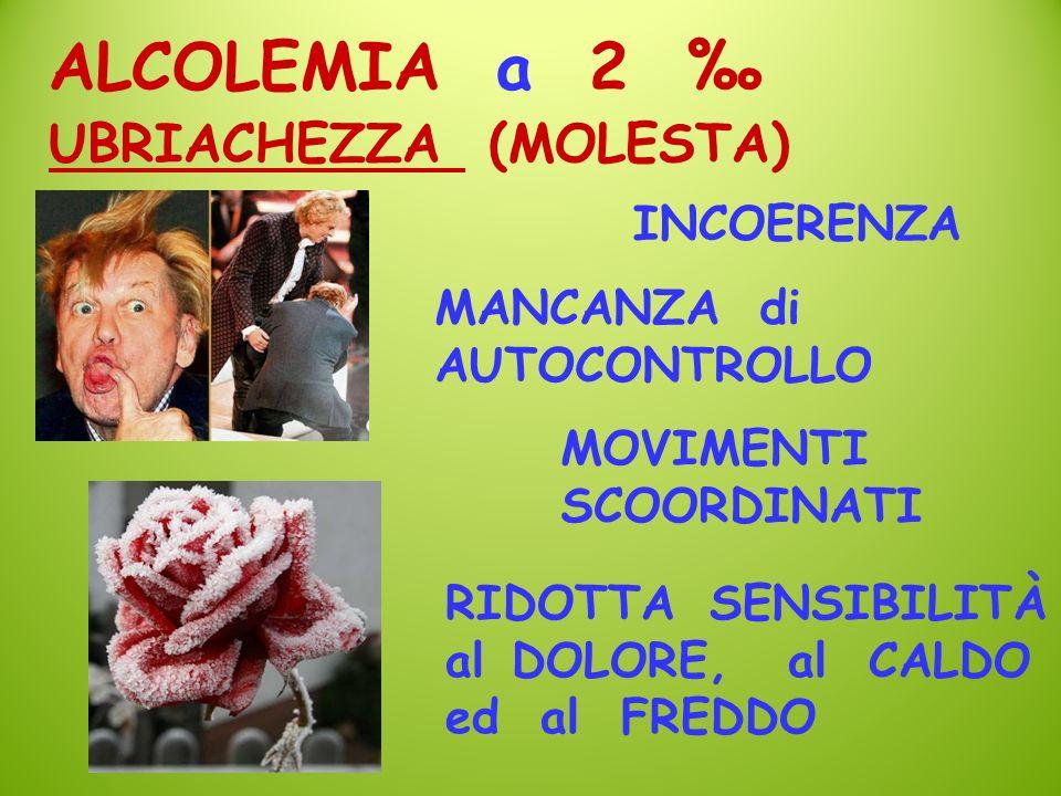 UBRIACHEZZA (MOLESTA) ALCOLEMIA a 2 INCOERENZA MANCANZA di AUTOCONTROLLO MOVIMENTI SCOORDINATI RIDOTTA SENSIBILITÀ alDOLORE, al CALDO ed al FREDDO