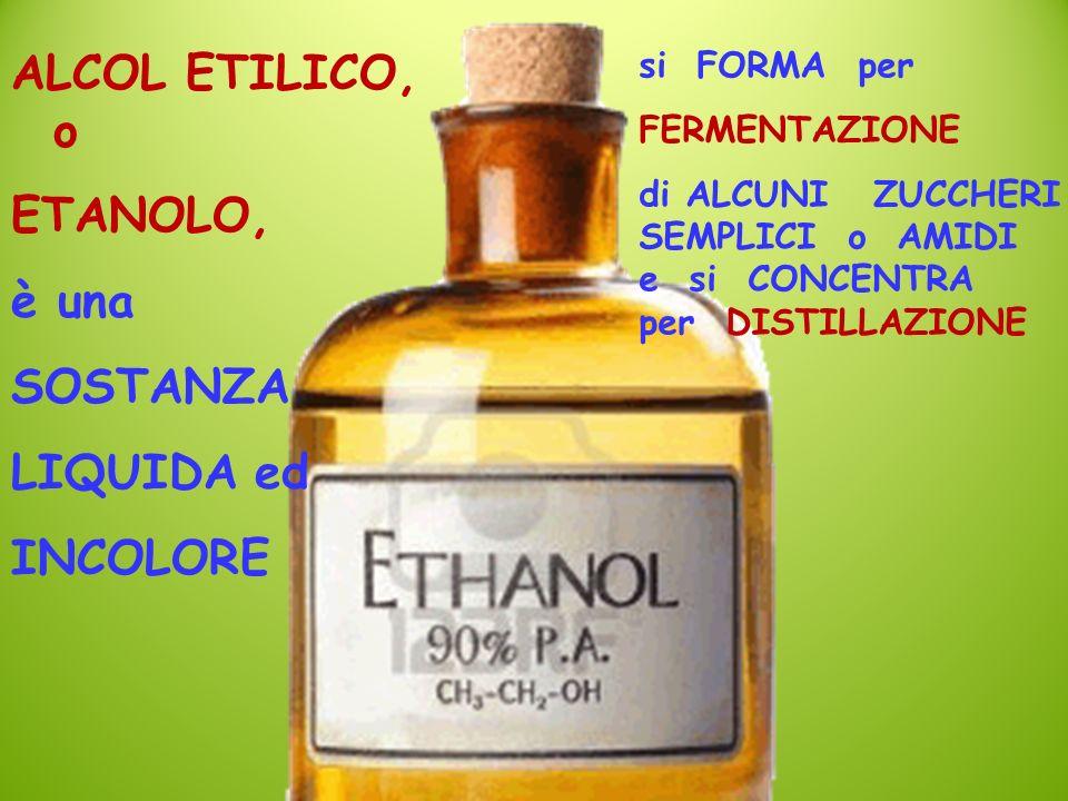 ALCOL ETILICO, o ETANOLO, è una SOSTANZA LIQUIDA ed INCOLORE si FORMA per FERMENTAZIONE di ALCUNI ZUCCHERI SEMPLICI o AMIDI e si CONCENTRA per DISTILL