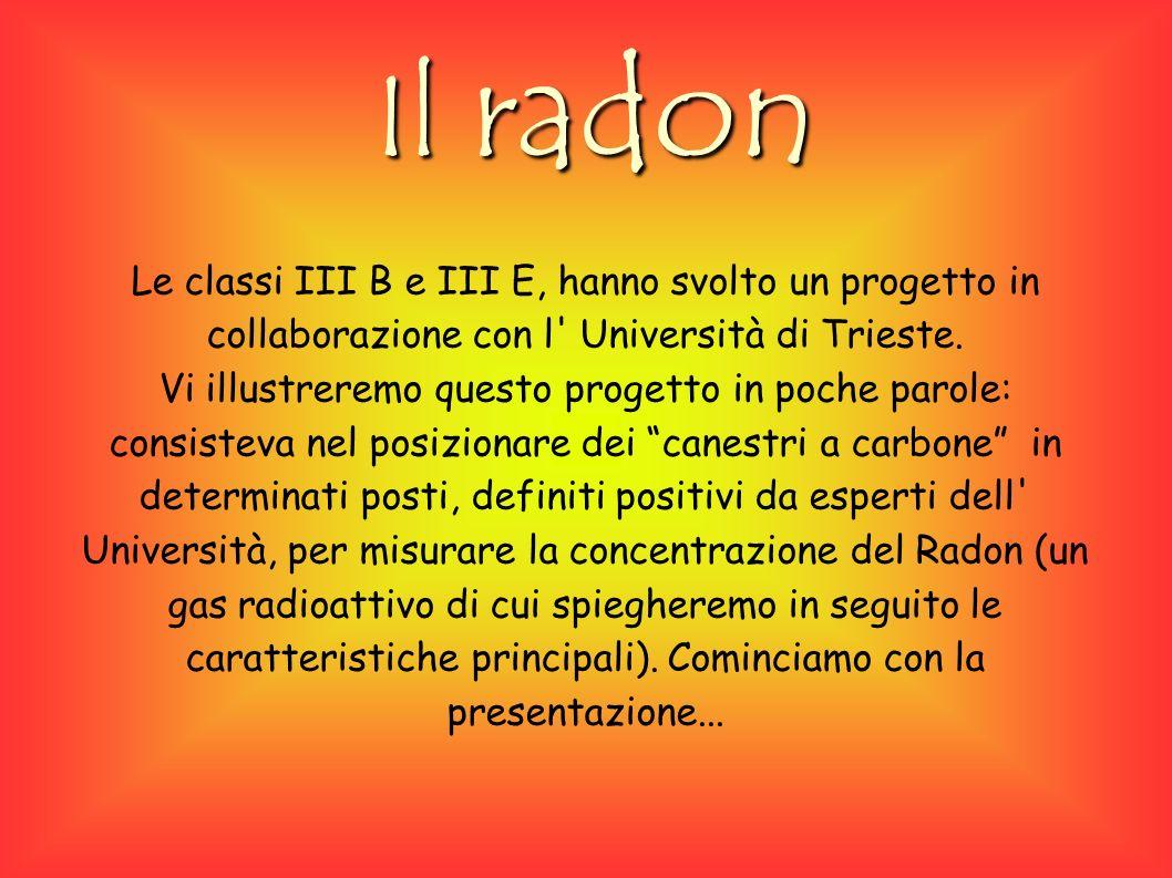 Il radon Le classi III B e III E, hanno svolto un progetto in collaborazione con l Università di Trieste.