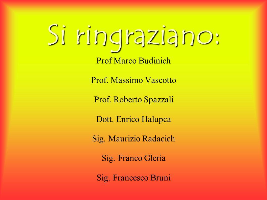 Si ringraziano: Prof Marco Budinich Prof. Massimo Vascotto Prof.