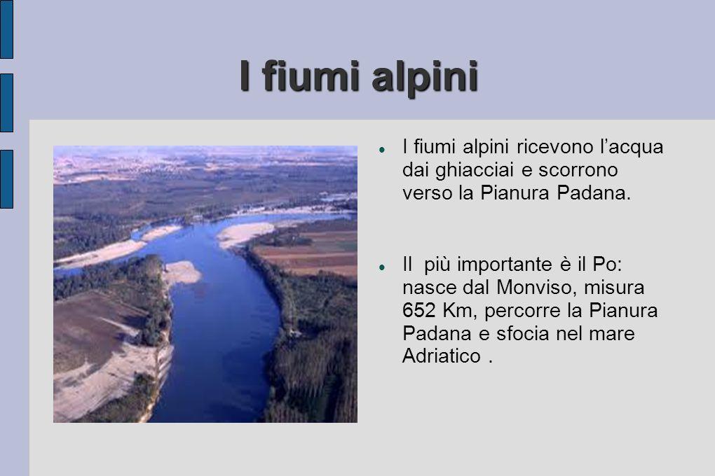 I fiumi alpini I fiumi alpini ricevono lacqua dai ghiacciai e scorrono verso la Pianura Padana. Il più importante è il Po: nasce dal Monviso, misura 6
