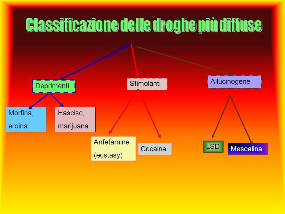 Deprimenti Stimolanti Allucinogene Morfina, eroina Hascisc, marijuana Anfetamine (ecstasy) LSD MescalinaCocaina