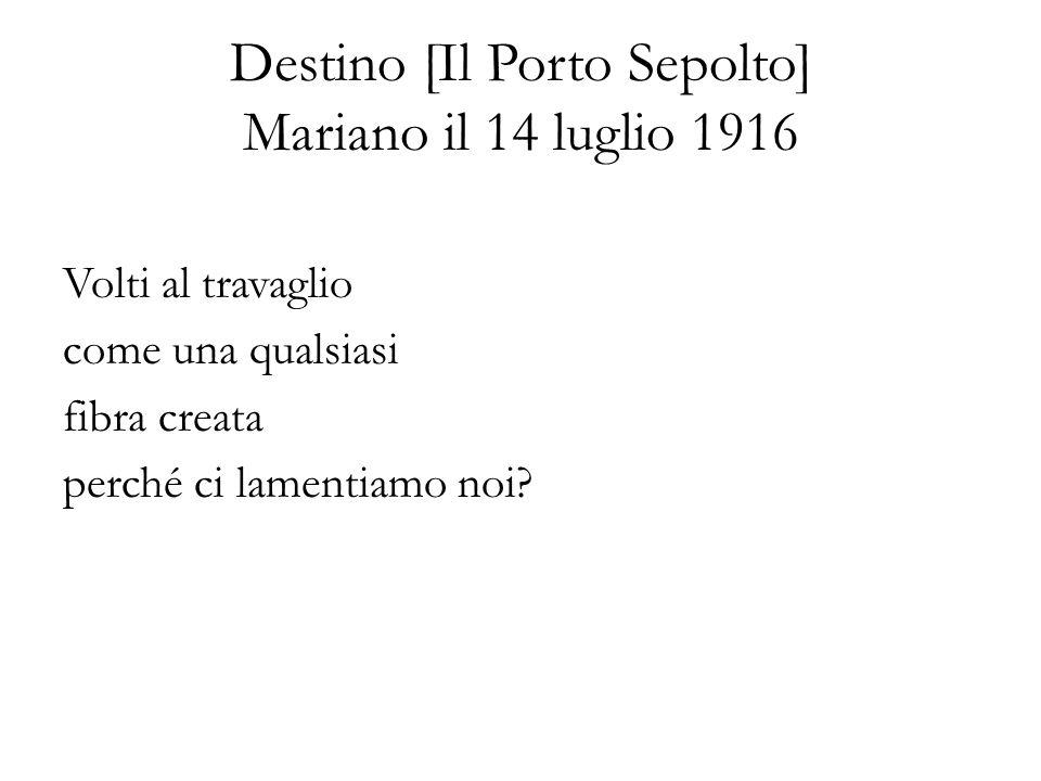 Destino [Il Porto Sepolto] Mariano il 14 luglio 1916 Volti al travaglio come una qualsiasi fibra creata perché ci lamentiamo noi?