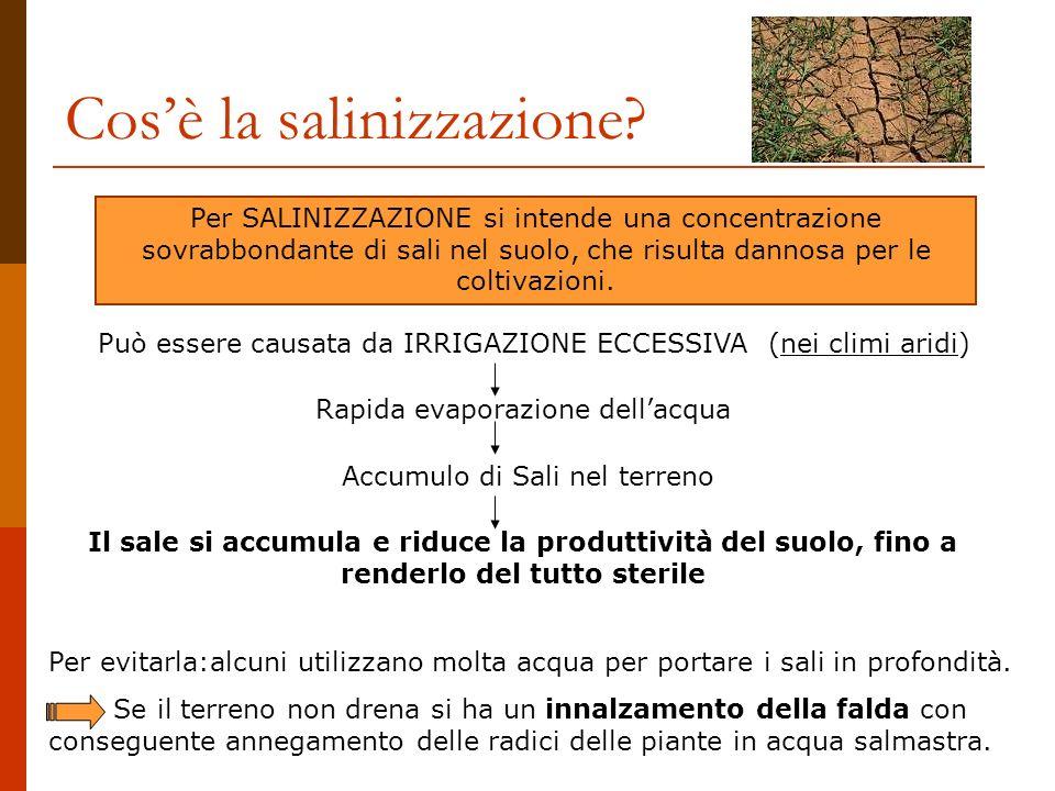 Cosè la salinizzazione? Per SALINIZZAZIONE si intende una concentrazione sovrabbondante di sali nel suolo, che risulta dannosa per le coltivazioni. Pu