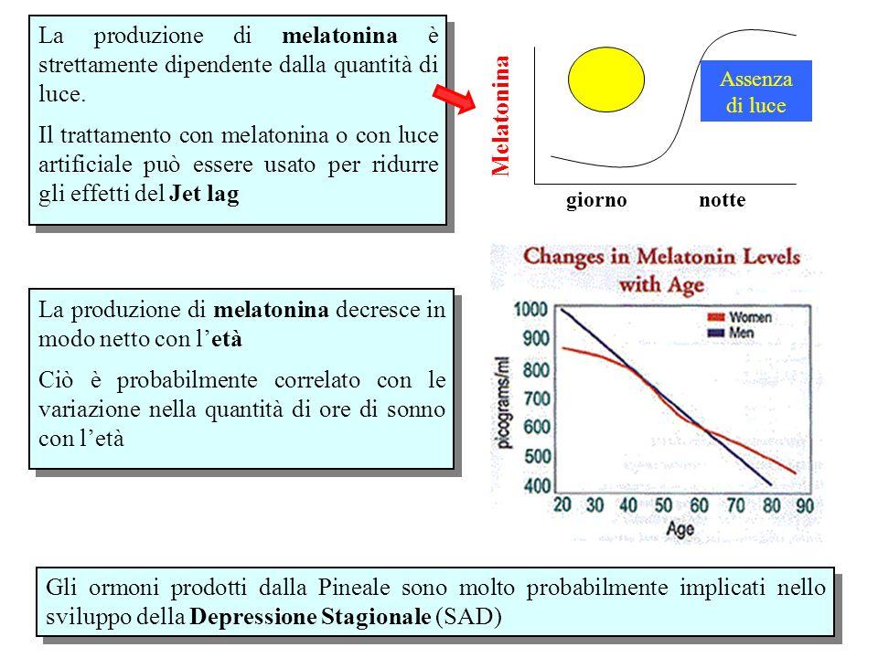 giorno notte Assenza di luce Melatonina La produzione di melatonina è strettamente dipendente dalla quantità di luce. Il trattamento con melatonina o