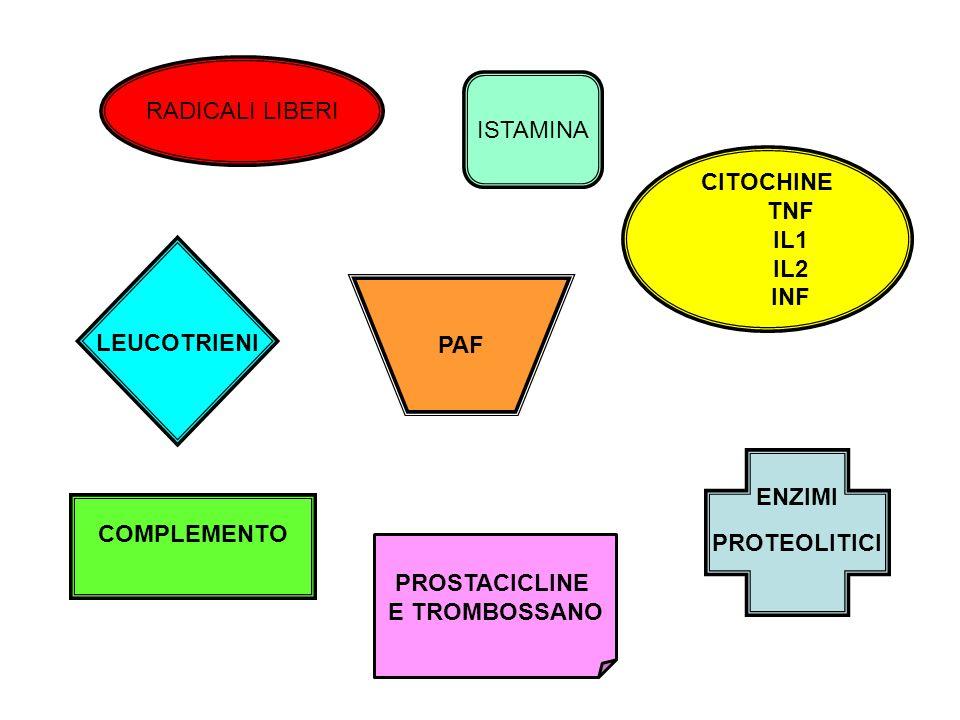 COMPLEMENTO RADICALI LIBERI CITOCHINE TNF IL1 IL2 INF ISTAMINA PAF PROSTACICLINE E TROMBOSSANO ENZIMI PROTEOLITICI LEUCOTRIENI
