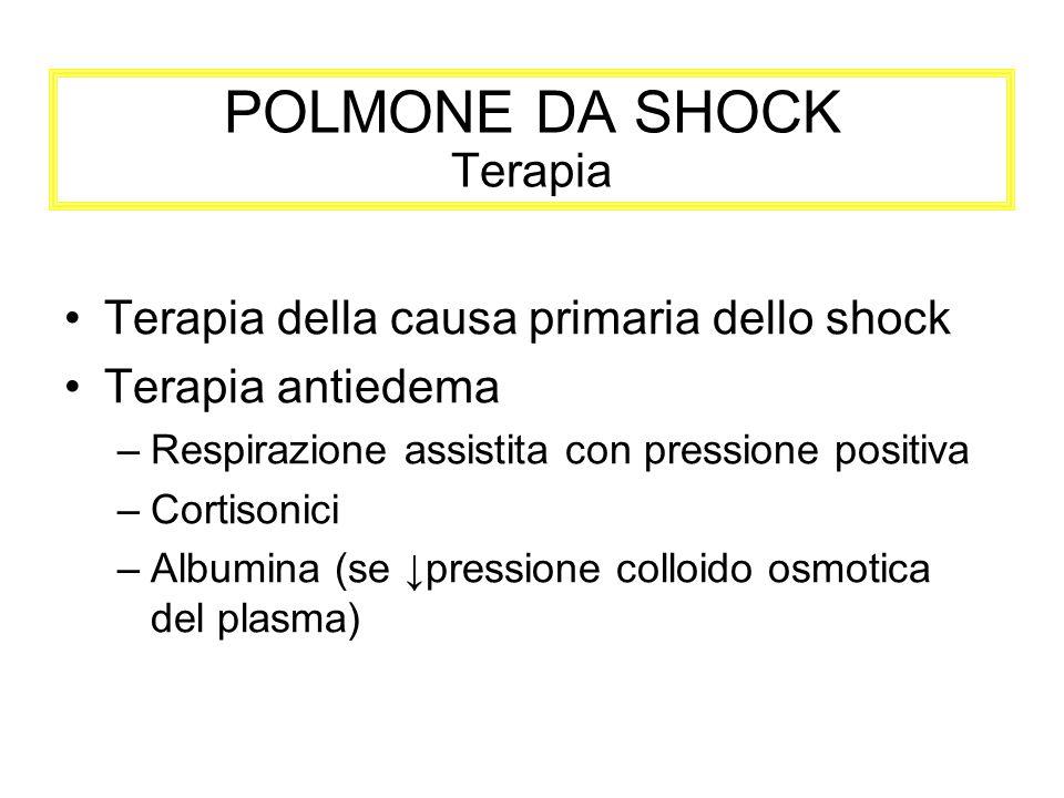 POLMONE DA SHOCK Terapia Terapia della causa primaria dello shock Terapia antiedema –Respirazione assistita con pressione positiva –Cortisonici –Album