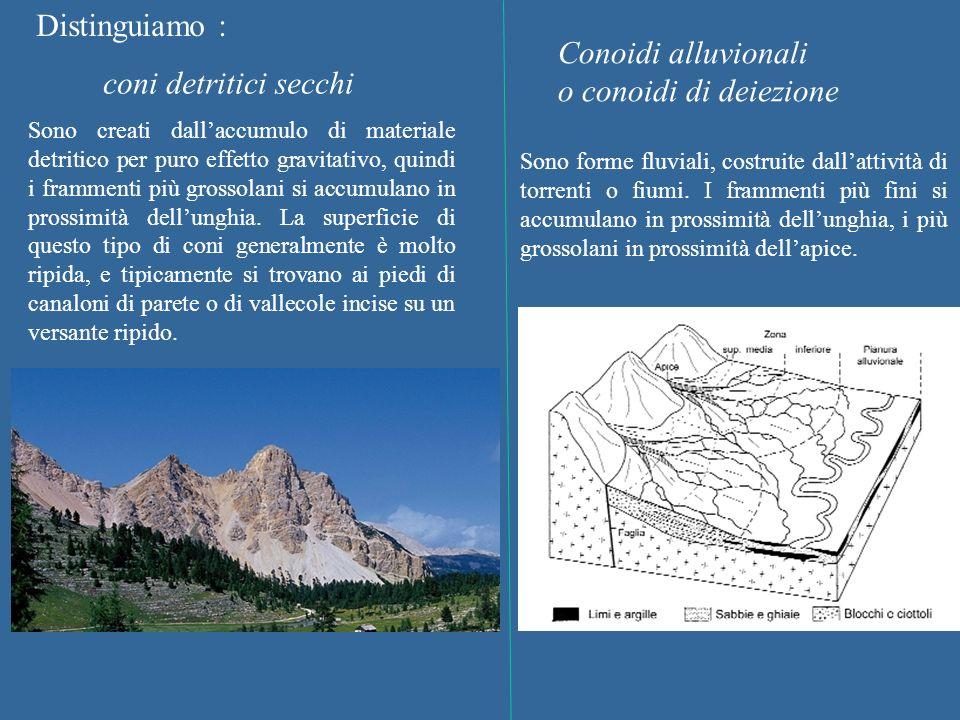 Distinguiamo : Conoidi alluvionali o conoidi di deiezione coni detritici secchi Sono creati dallaccumulo di materiale detritico per puro effetto gravi