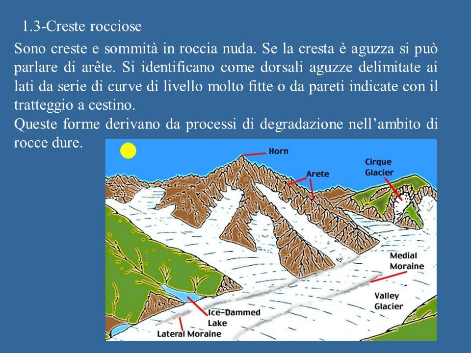 1.3-Creste rocciose Sono creste e sommità in roccia nuda. Se la cresta è aguzza si può parlare di arête. Si identificano come dorsali aguzze delimitat