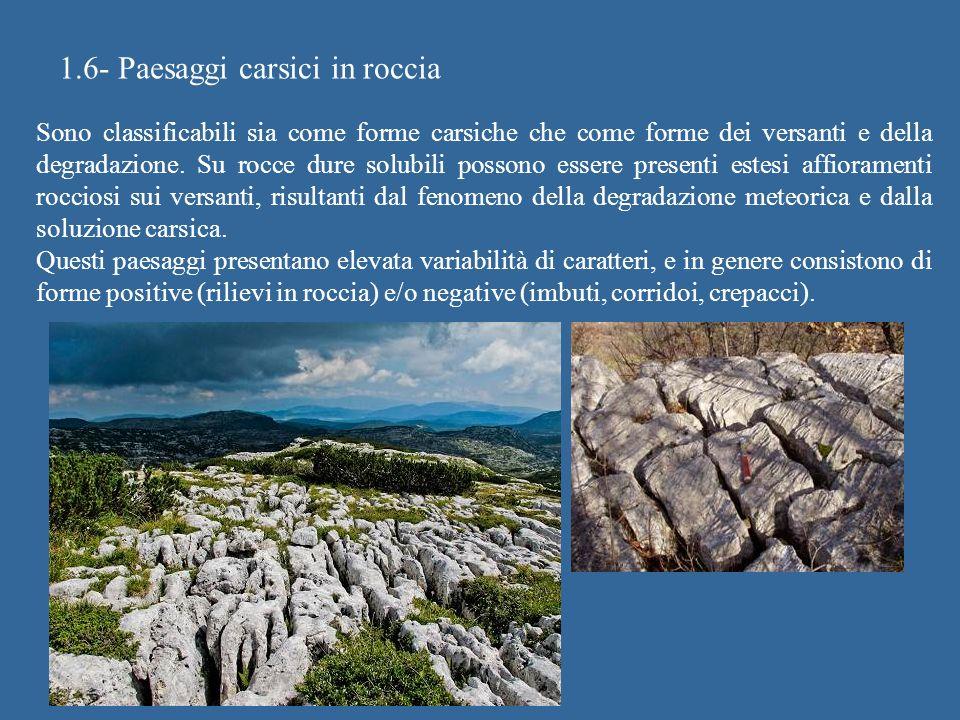 1.6- Paesaggi carsici in roccia Sono classificabili sia come forme carsiche che come forme dei versanti e della degradazione. Su rocce dure solubili p
