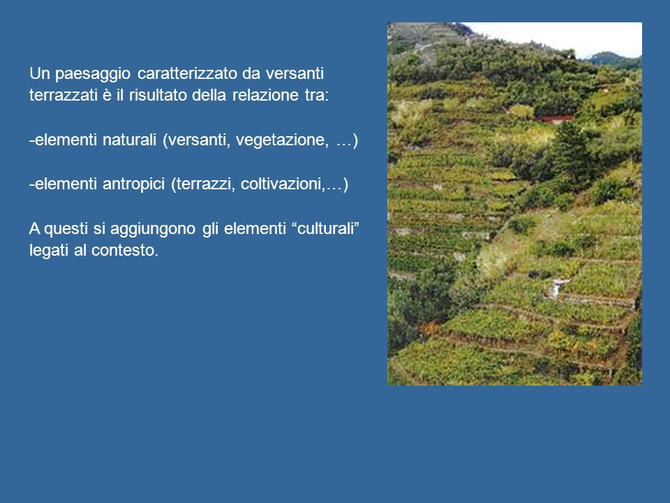 Un paesaggio caratterizzato da versanti terrazzati è il risultato della relazione tra: -elementi naturali (versanti, vegetazione, …) -elementi antropici (terrazzi, coltivazioni,…) A questi si aggiungono gli elementi culturali legati al contesto.