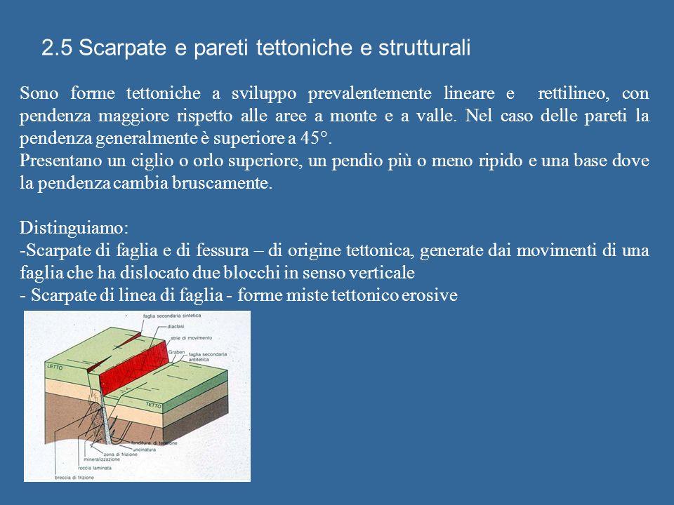 2.5 Scarpate e pareti tettoniche e strutturali Sono forme tettoniche a sviluppo prevalentemente lineare e rettilineo, con pendenza maggiore rispetto alle aree a monte e a valle.