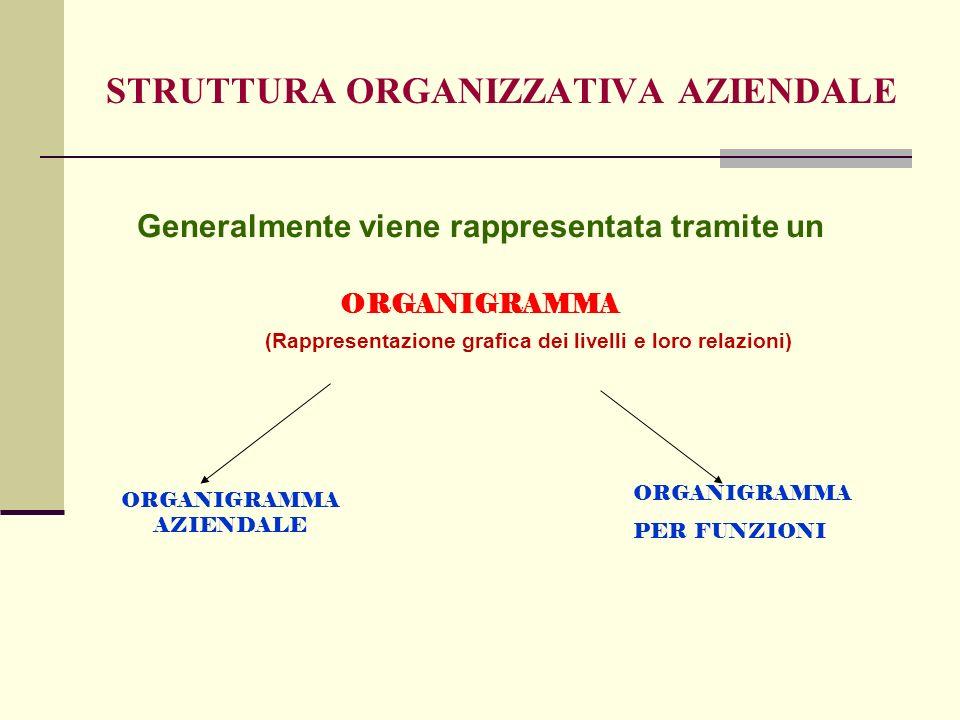 STRUTTURA ORGANIZZATIVA AZIENDALE Generalmente viene rappresentata tramite un ORGANIGRAMMA AZIENDALE ORGANIGRAMMA PER FUNZIONI ORGANIGRAMMA (Rappresentazione grafica dei livelli e loro relazioni)