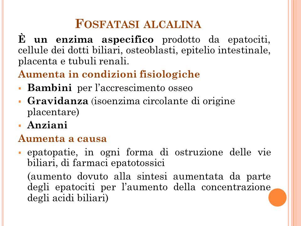 F OSFATASI ALCALINA È un enzima aspecifico prodotto da epatociti, cellule dei dotti biliari, osteoblasti, epitelio intestinale, placenta e tubuli renali.