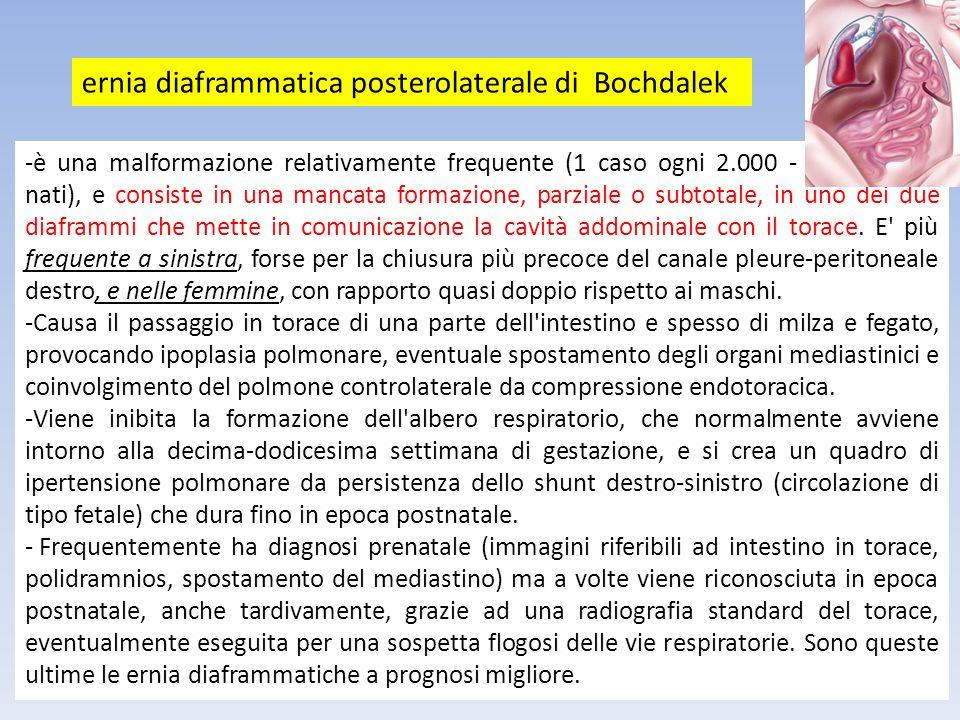 -è una malformazione relativamente frequente (1 caso ogni 2.000 - 5.000 nuovi nati), e consiste in una mancata formazione, parziale o subtotale, in un