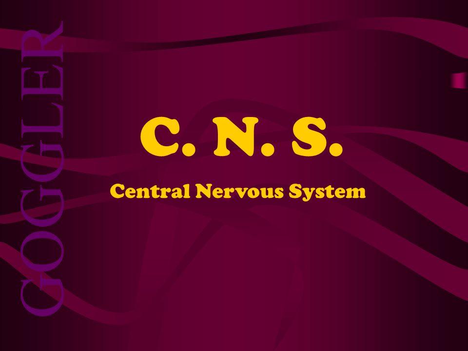 C. N. S. Central Nervous System GOGGLER