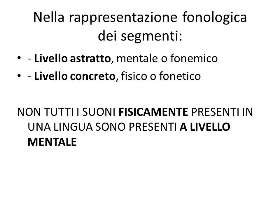 Nella rappresentazione fonologica dei segmenti: - Livello astratto, mentale o fonemico - Livello concreto, fisico o fonetico NON TUTTI I SUONI FISICAM