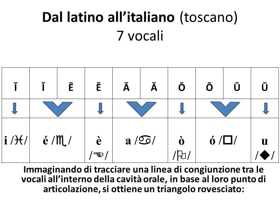 Dal latino allitaliano (toscano) 7 vocali ĪĬĒĔĀĂŎŌŬŪ i / /é / / è / / a / / ò / / ó / / u / / Immaginando di tracciare una linea di congiunzione tra le vocali allinterno della cavità orale, in base al loro punto di articolazione, si ottiene un triangolo rovesciato:
