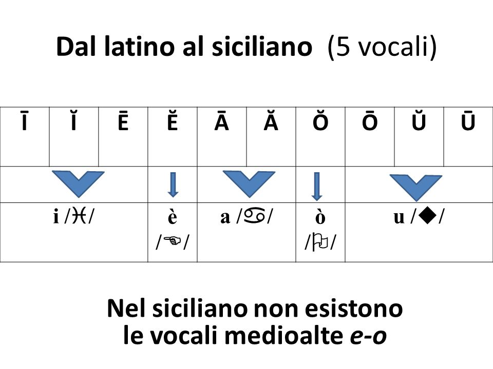 Dal latino al siciliano (5 vocali) ĪĬĒĔĀĂŎŌŬŪ i / / è / / a / / ò / / u / / Nel siciliano non esistono le vocali medioalte e-o