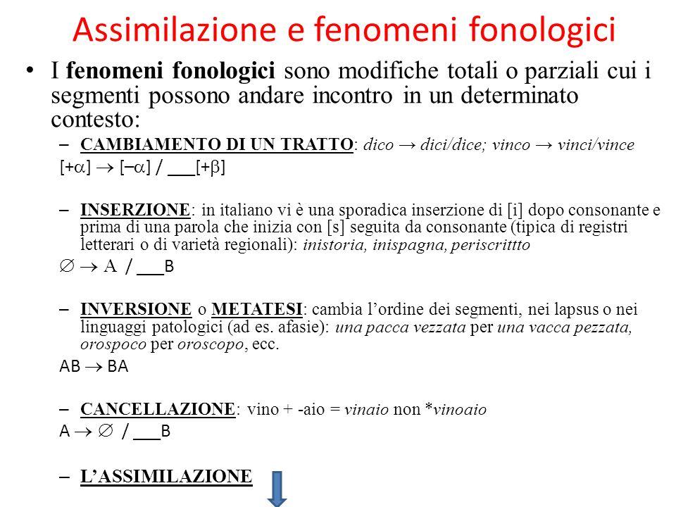 Assimilazione e fenomeni fonologici I fenomeni fonologici sono modifiche totali o parziali cui i segmenti possono andare incontro in un determinato contesto: – CAMBIAMENTO DI UN TRATTO: dico dici/dice; vinco vinci/vince [+ ] [– ] / ___[+ ] – INSERZIONE: in italiano vi è una sporadica inserzione di [i] dopo consonante e prima di una parola che inizia con [s] seguita da consonante (tipica di registri letterari o di varietà regionali): inistoria, inispagna, periscrittto / ___B – INVERSIONE o METATESI: cambia lordine dei segmenti, nei lapsus o nei linguaggi patologici (ad es.