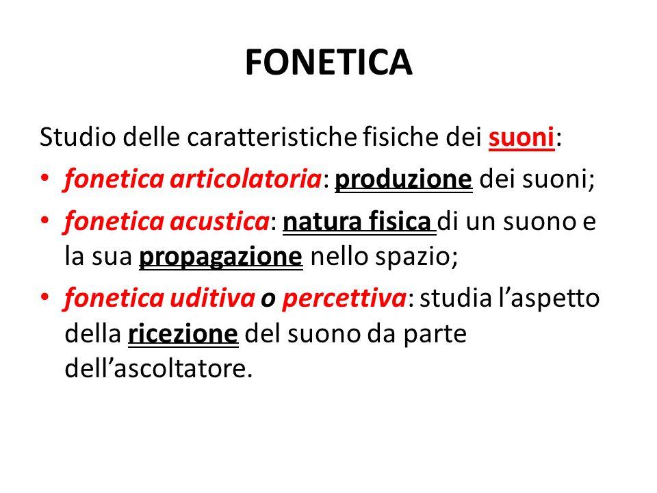 FONETICA Studio delle caratteristiche fisiche dei suoni: fonetica articolatoria: produzione dei suoni; fonetica acustica: natura fisica di un suono e