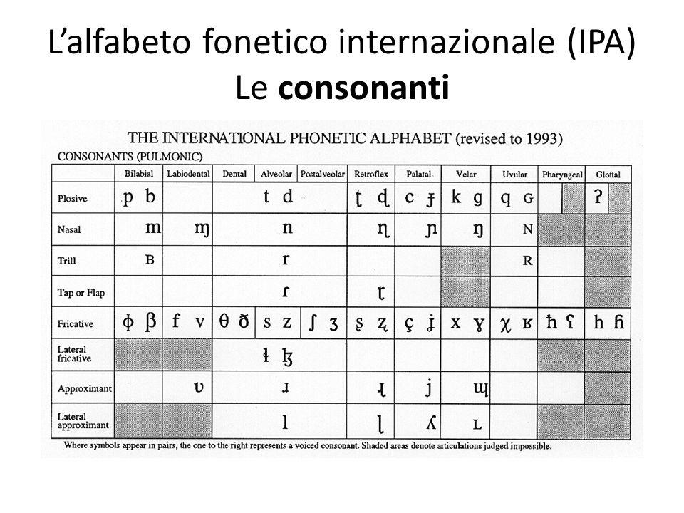 Lalfabeto fonetico internazionale (IPA) Le consonanti