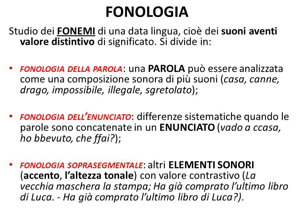 FONOLOGIA Studio dei FONEMI di una data lingua, cioè dei suoni aventi valore distintivo di significato. Si divide in: FONOLOGIA DELLA PAROLA : una PAR