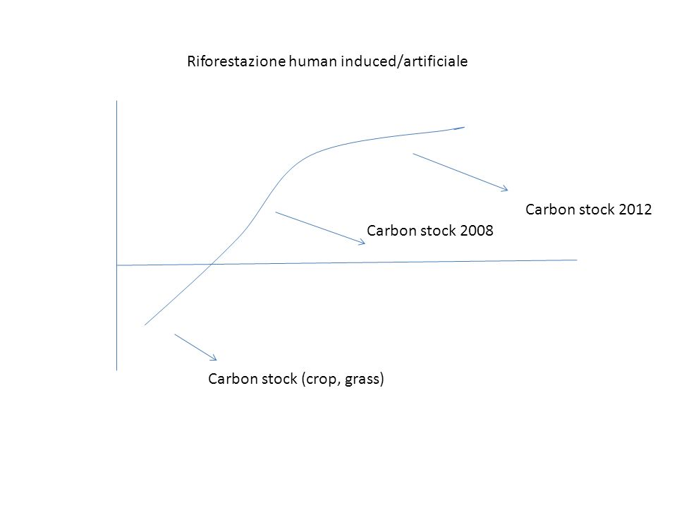 Carbon stock (crop, grass) Carbon stock 2008 Carbon stock 2012 Riforestazione human induced/artificiale
