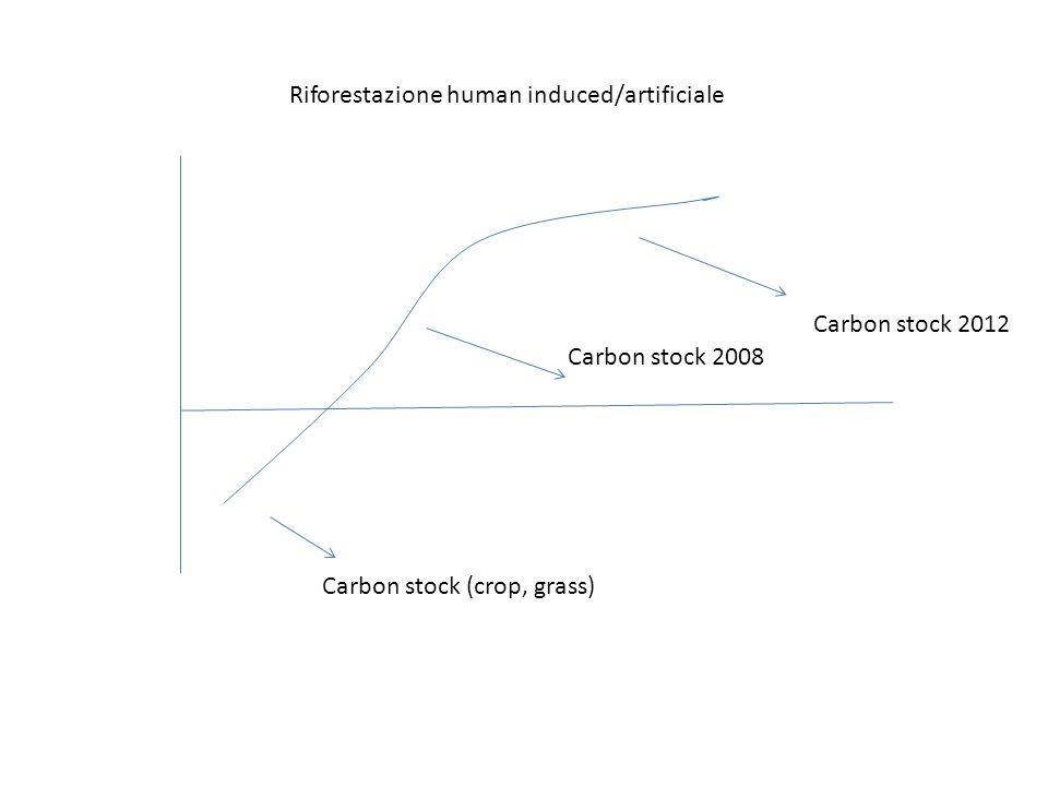 Carbon stock (crop, grass) Carbon stock 2008 Carbon stock 2012 Riforestazione human induced/artificiale