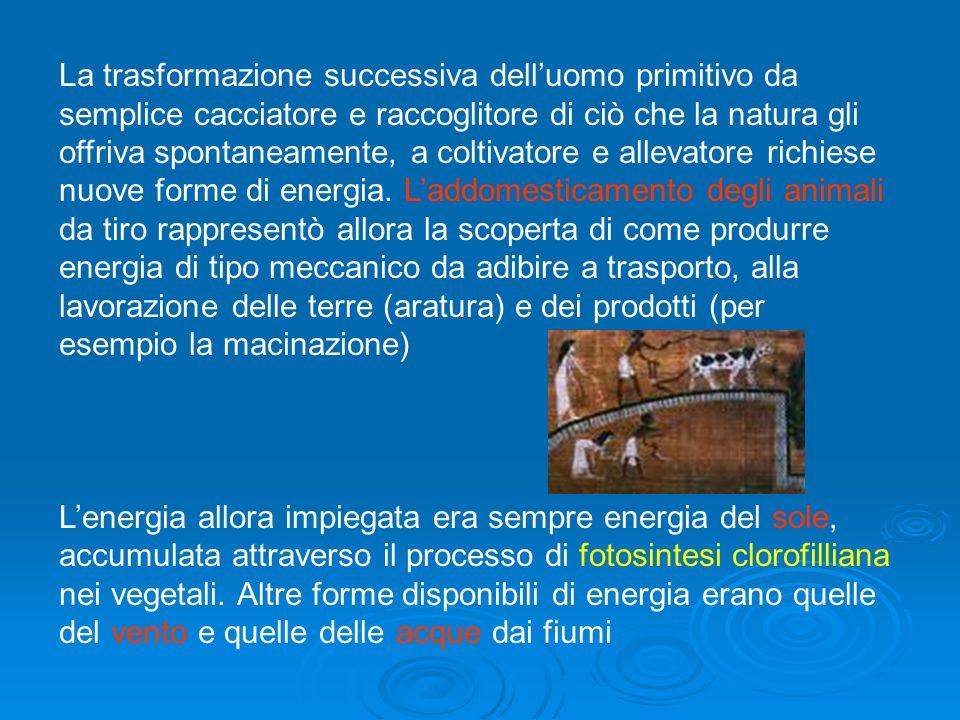 ENERGIA E FONTI ENERGIETICHE NELLA STORIA I primi uomini non avevano a disposizione altra energia che quella derivata dal cibo (energia chimica energi