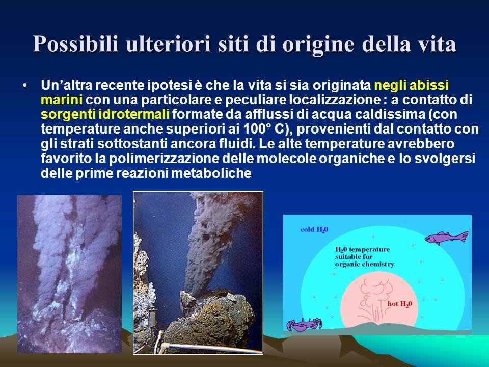 Possibili ulteriori siti di origine della vita Unaltra recente ipotesi è che la vita si sia originata negli abissi marini con una particolare e peculi