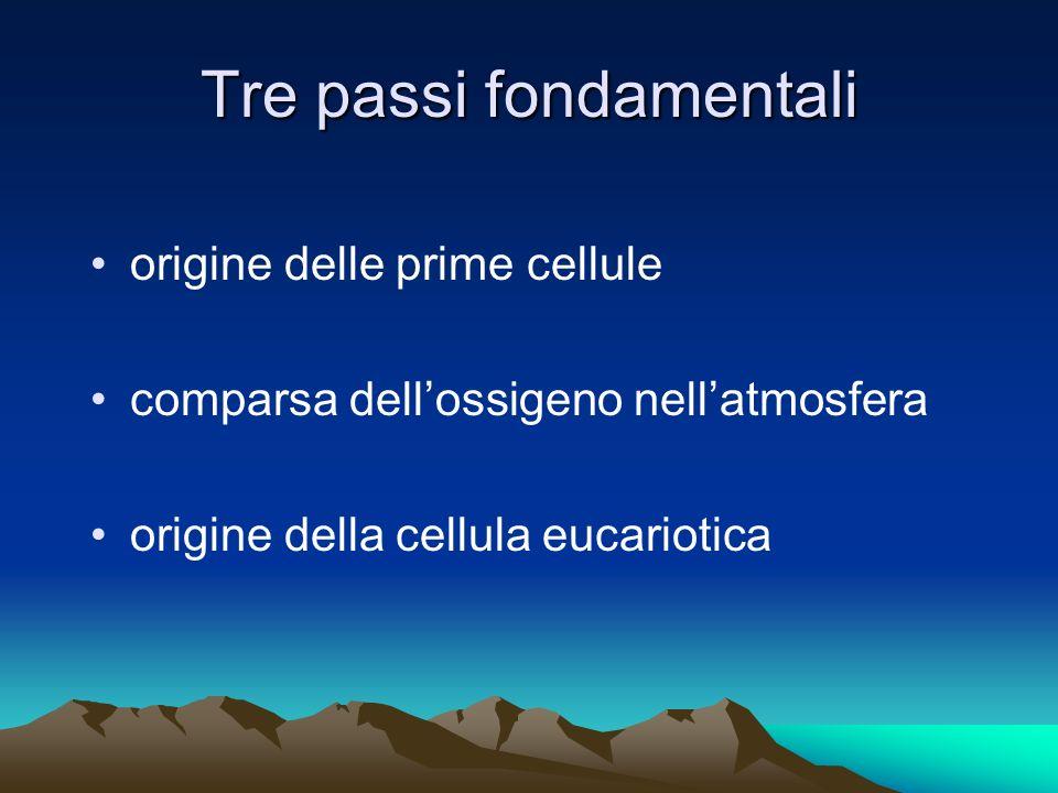 Tre passi fondamentali origine delle prime cellule comparsa dellossigeno nellatmosfera origine della cellula eucariotica