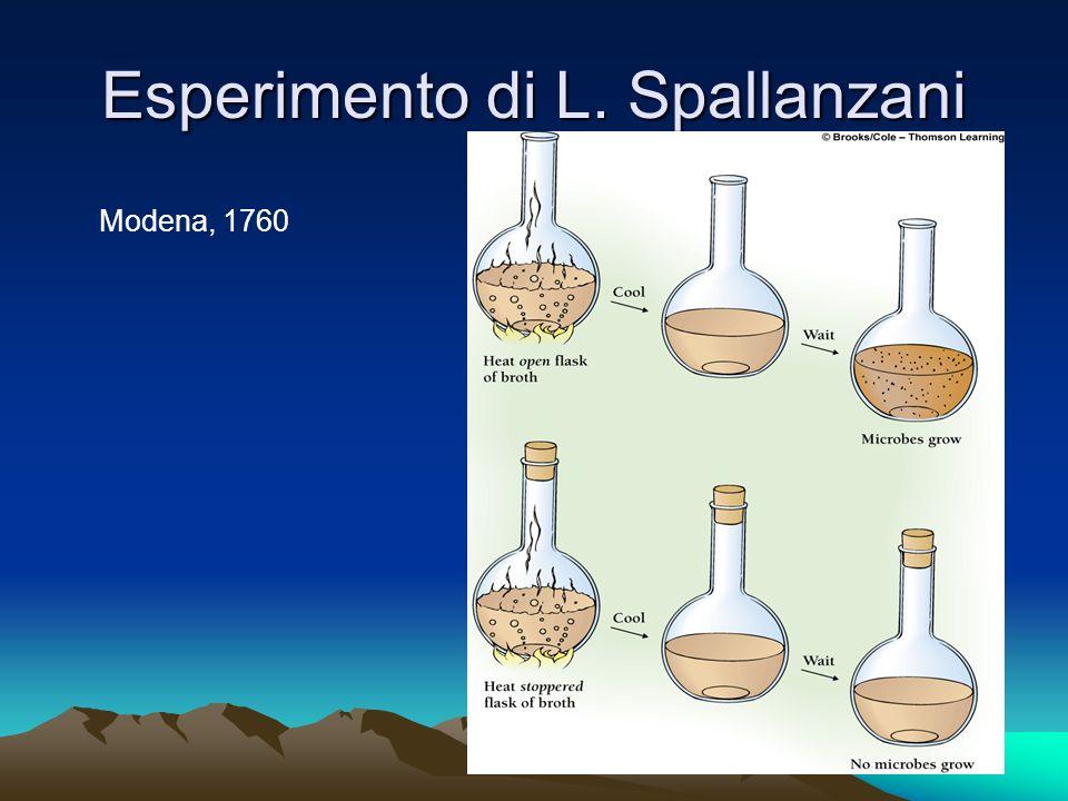 Esperimento di L. Spallanzani Modena, 1760