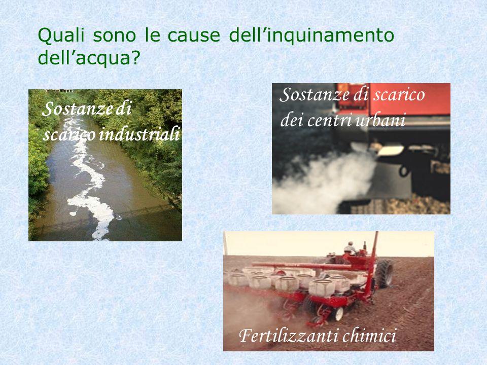 Quali sono le cause dellinquinamento dellacqua? Sostanze di scarico industriali Sostanze di scarico dei centri urbani Fertilizzanti chimici