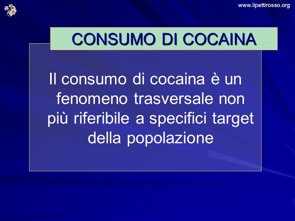 Il consumo di cocaina è un fenomeno trasversale non più riferibile a specifici target della popolazione CONSUMO DI COCAINA www.ilpettirosso.org