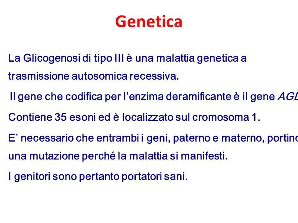 Mutazioni nella popolazione italiana ATGTAG 3513 14 1526 27 31 32 33 34 c.100G>T c.112A>T c.276delG c.293+2T>Ac.664+3A>G c.442delA c.672insT c.700T>C c.753_756delGACA c.757G > C c.853C>T c.1571G>A c.1589G>C c.1264A>T c.1283G>A c.