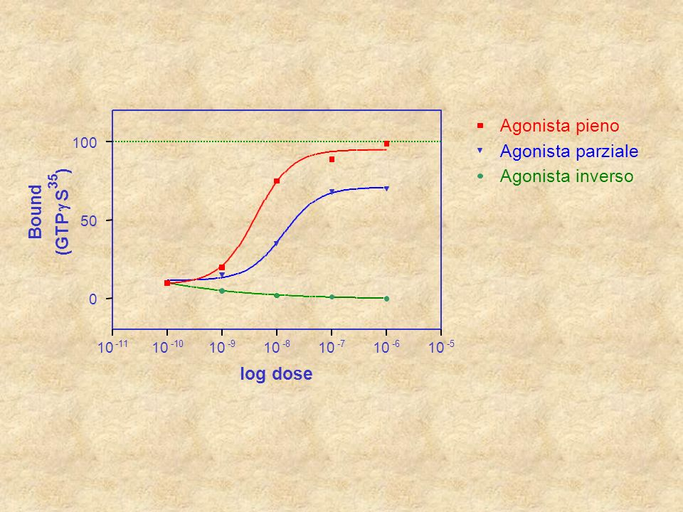 cAMP La reazione è basata sulla competizione per lanti-anticorpo tra cAMP legato alla fosfatasi alcalina e quello libero proveniente dalla stimolazione recettoriale Dosaggio del secondo messaggero AP + S+ S S S S