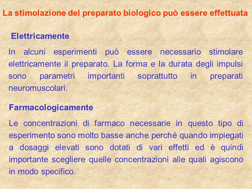La stimolazione del preparato biologico può essere effettuata Elettricamente Farmacologicamente In alcuni esperimenti può essere necessario stimolare