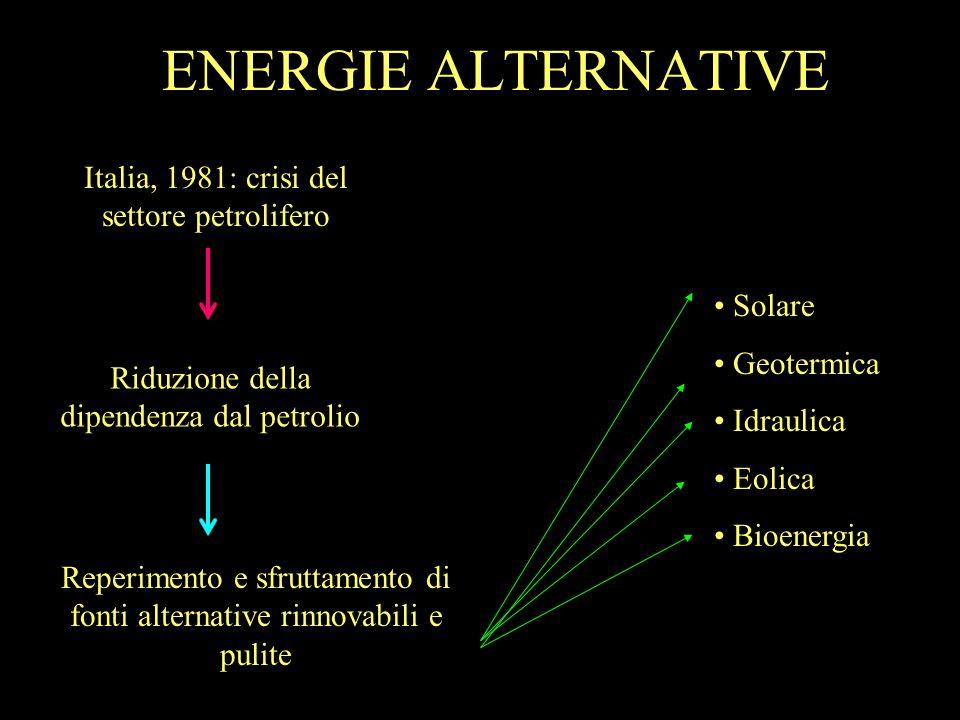 ENERGIE ALTERNATIVE Italia, 1981: crisi del settore petrolifero Riduzione della dipendenza dal petrolio Reperimento e sfruttamento di fonti alternativ
