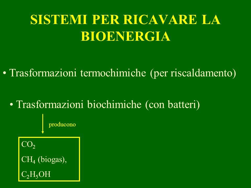 SISTEMI PER RICAVARE LA BIOENERGIA Trasformazioni termochimiche (per riscaldamento) Trasformazioni biochimiche (con batteri) CO 2 CH 4 (biogas), C 2 H