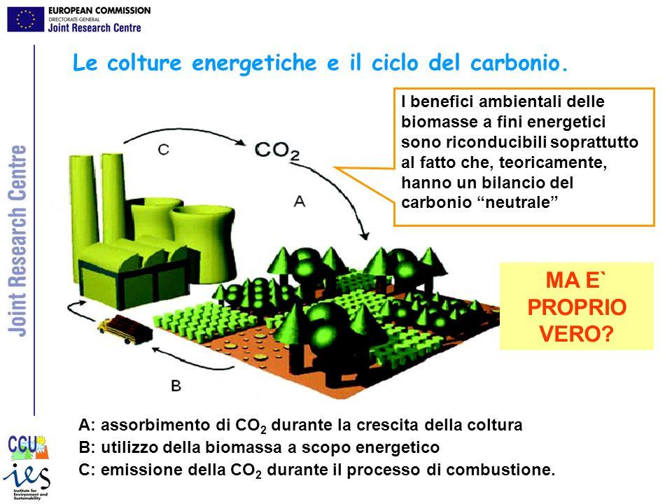 Le colture energetiche e il ciclo del carbonio. A: assorbimento di CO 2 durante la crescita della coltura B: utilizzo della biomassa a scopo energetic