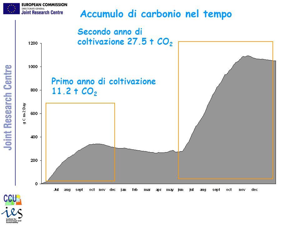 Accumulo di carbonio nel tempo Primo anno di coltivazione 11.2 t CO 2 Secondo anno di coltivazione 27.5 t CO 2