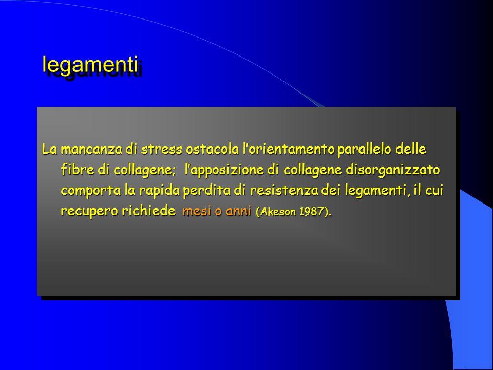 legamentilegamenti La mancanza di stress ostacola lorientamento parallelo delle fibre di collagene; lapposizione di collagene disorganizzato comporta la rapida perdita di resistenza dei legamenti, il cui recupero richiede mesi o anni (Akeson 1987).