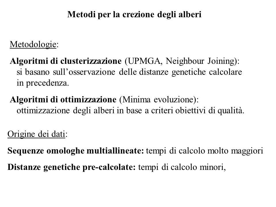 Metodi per la crezione degli alberi Metodologie: Algoritmi di clusterizzazione (UPMGA, Neighbour Joining): si basano sullosservazione delle distanze g