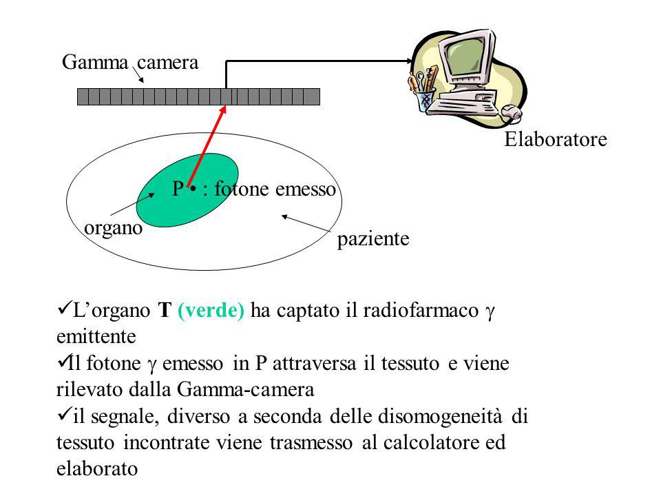 paziente organo P : fotone emesso Lorgano T (verde) ha captato il radiofarmaco emittente Il fotone emesso in P attraversa il tessuto e viene rilevato dalla Gamma-camera il segnale, diverso a seconda delle disomogeneità di tessuto incontrate viene trasmesso al calcolatore ed elaborato Gamma camera Elaboratore
