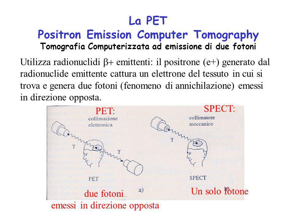La PET Positron Emission Computer Tomography Tomografia Computerizzata ad emissione di due fotoni Utilizza radionuclidi emittenti: il positrone (e+) generato dal radionuclide emittente cattura un elettrone del tessuto in cui si trova e genera due fotoni (fenomeno di annichilazione) emessi in direzione opposta.