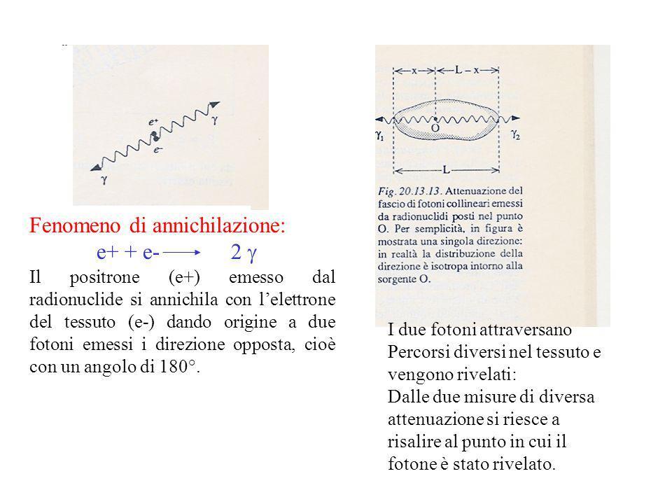 Fenomeno di annichilazione: e+ + e- 2 Il positrone (e+) emesso dal radionuclide si annichila con lelettrone del tessuto (e-) dando origine a due fotoni emessi i direzione opposta, cioè con un angolo di 180°.
