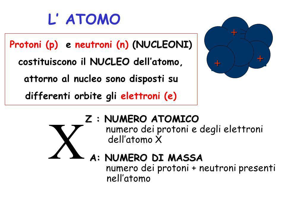 L ATOMO NUCLEONI Protoni (p) e neutroni (n) (NUCLEONI) NUCLEO costituiscono il NUCLEO dellatomo, attorno al nucleo sono disposti su differenti orbite gli elettroni (e) + + + X Z : NUMERO ATOMICO numero dei protoni e degli elettroni dellatomo X A: NUMERO DI MASSA numero dei protoni + neutroni presenti nellatomo