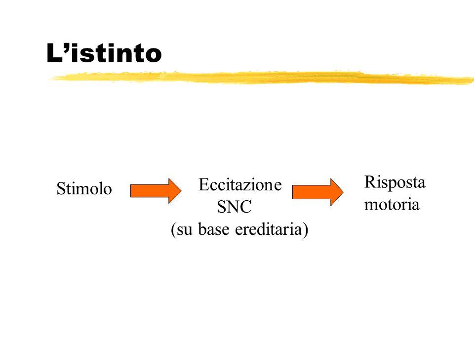 Listinto Stimolo Eccitazione SNC (su base ereditaria) Risposta motoria