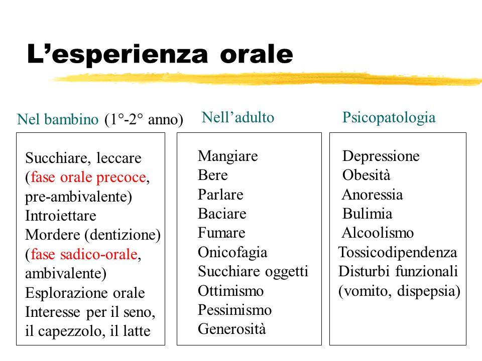 Lesperienza orale Nel bambino (1°-2° anno) Succhiare, leccare (fase orale precoce, pre-ambivalente) Introiettare Mordere (dentizione) (fase sadico-ora